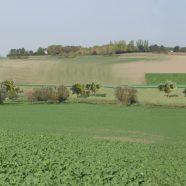 Trames vertes dans la plaine de versailles