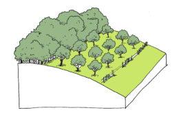 Plan paysage et plantations – Meurthe-et-Moselle